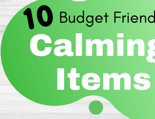 10 Budget Friendly Dollar Store Calming Items